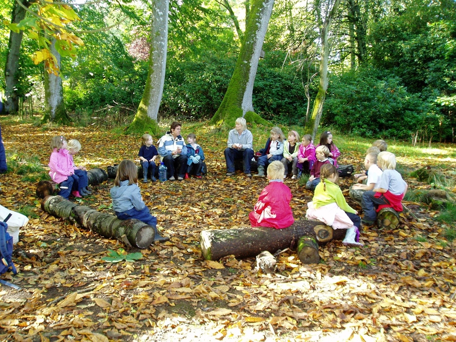 A forest schools session in action